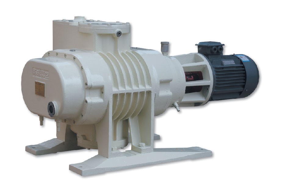 ZJP 600 Roots Vacuum Pumps