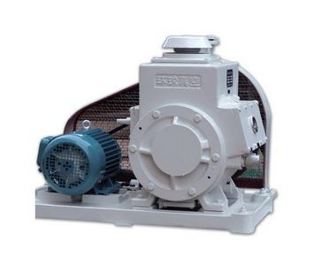 2X 30A Rotary Vane Vacuum Pumps